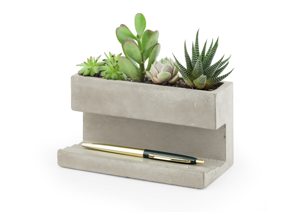 Kikkerland Large Concrete Desktop Planter