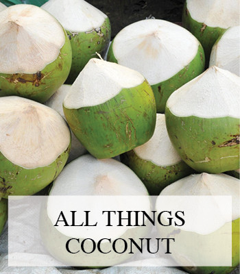 COCONUT RECIPE IDEAS