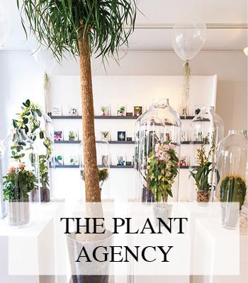 THE PLANT AGENCY – HET EERSTE MODELLENBUREAU VOOR PLANTEN